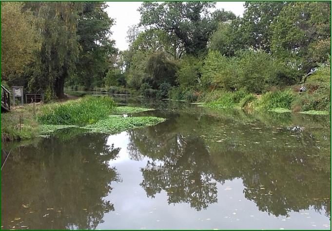 21 Bstoke Canal