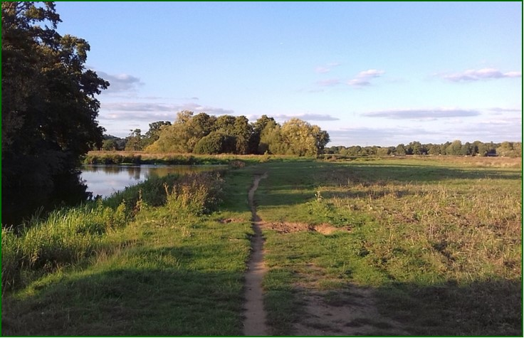8 Field Path