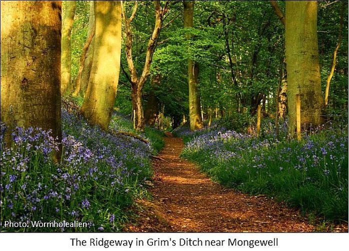 ridgeway mongwell