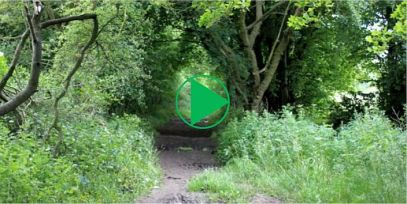 the icknield way video