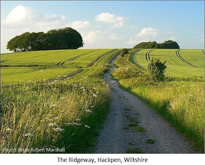 the ridgeway hackpen wiltshire