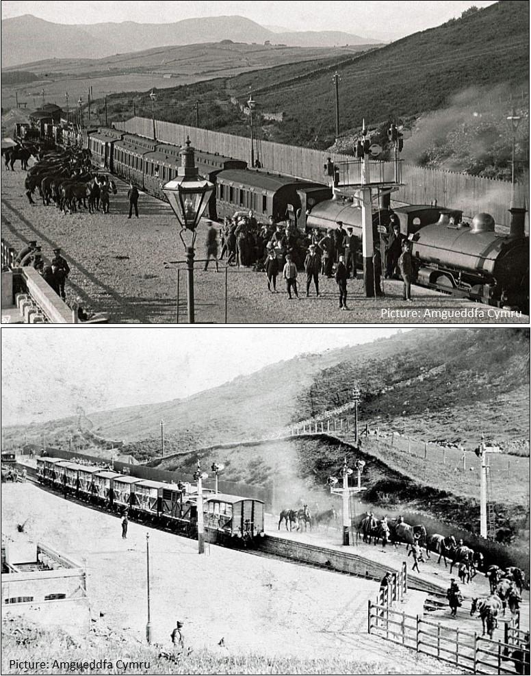 trawsfynydd railway station