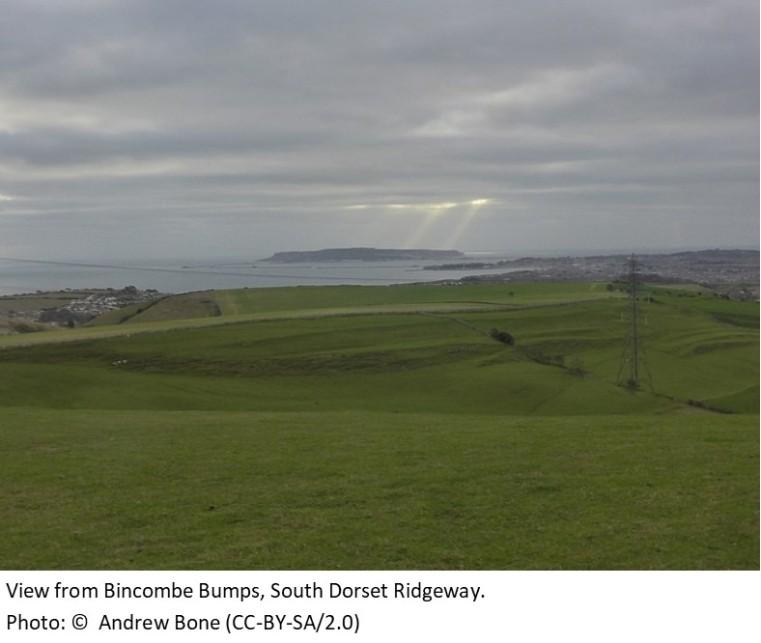 Bincombe Bumps South Dorset Ridgeway