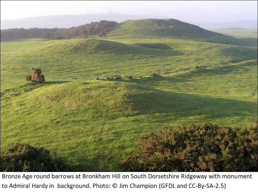 Bronze age round barrows on Bronkham Hill Dorset