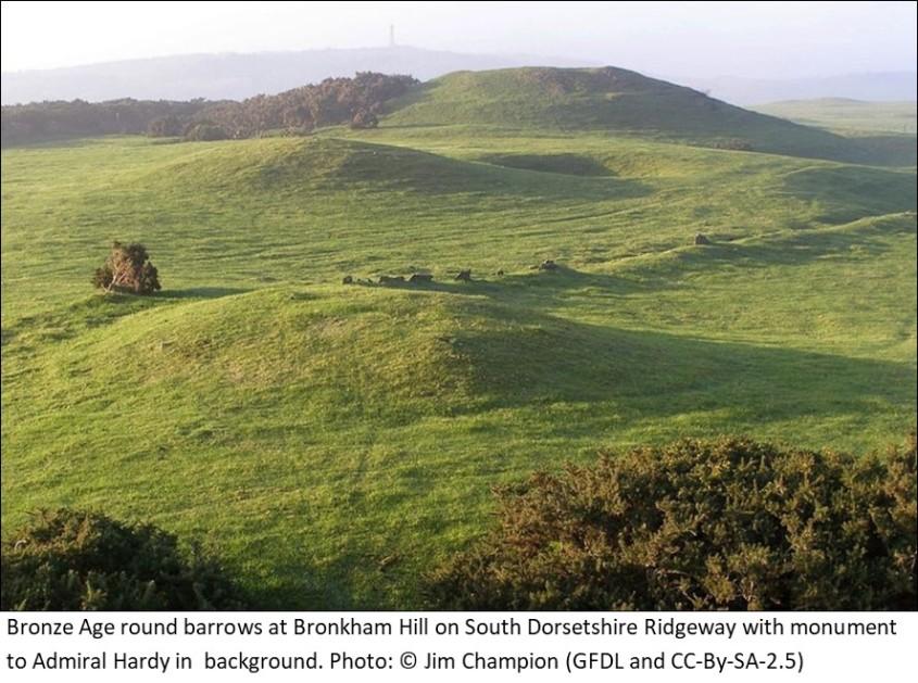 Bronze age round barrows on Bronkham Hill Dorset