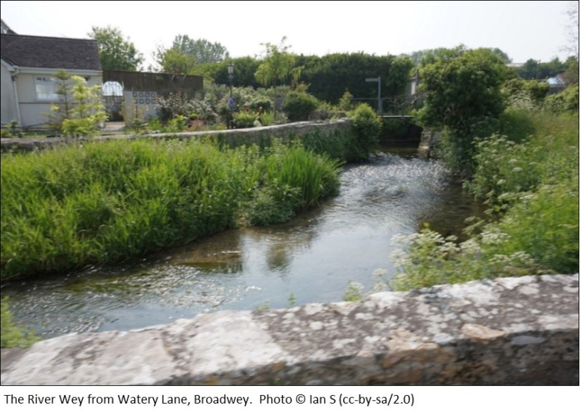 The River Wey from Watery Lane Broadwey
