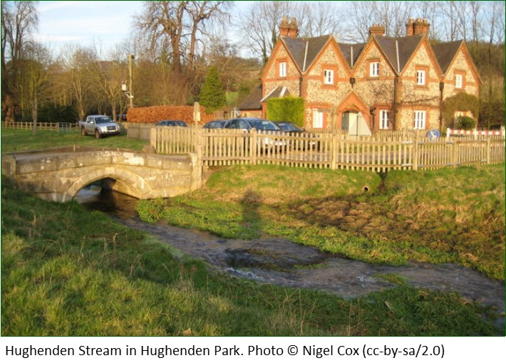 Hughenden Stream in Hughenden Park