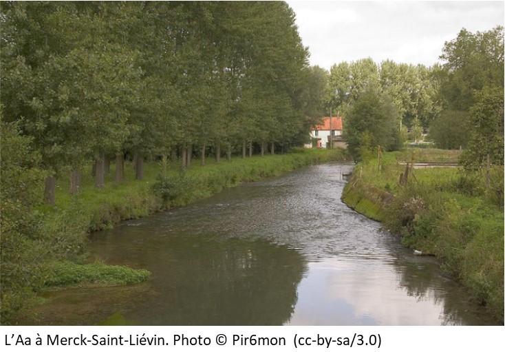 L'Aa à Merck-Saint-Liévin
