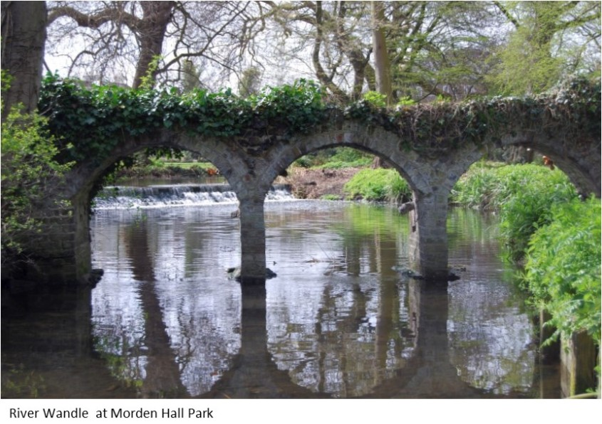 River Wandle Morden Park