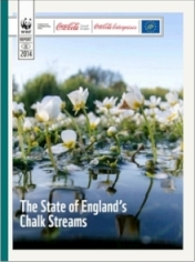 The State of England Chalk Streams