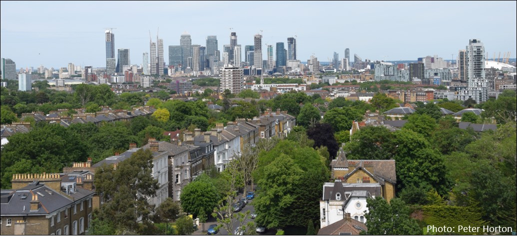 View from Tower St Peters Brockley2
