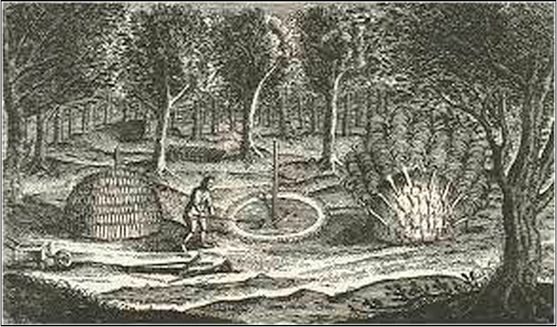 Charcoal Burning John Evelyn's Sylva 1664