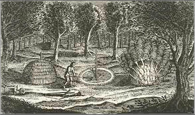 Charcoal Burning John Evelyn's Sylva 1664