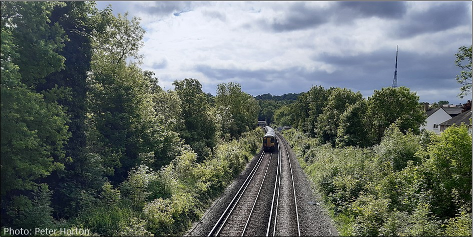 Dulwich Rail Cutting