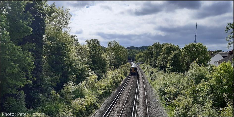Dulwich Rail Cutting